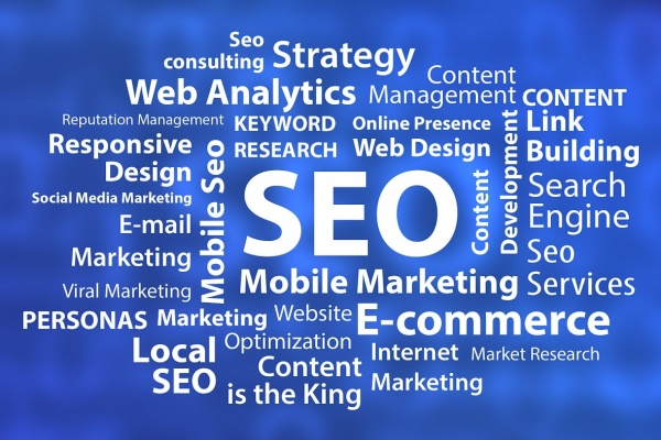Top Local SEO Agency Roseville MN